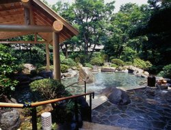 Hakone hotels with swimming pool