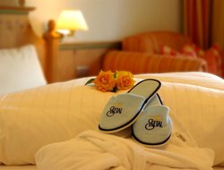 Pets-friendly hotels in Emberg