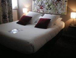 Pets-friendly hotels in Angers
