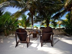 Pets-friendly hotels in Holbox Island
