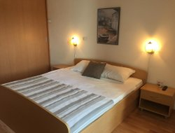 Pets-friendly hotels in PUNAT