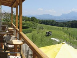 Pets-friendly hotels in Ainring