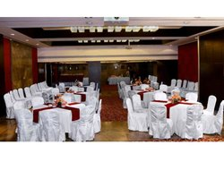 Navi Mumbai hotels with swimming pool