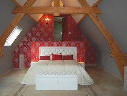 Pets-friendly hotels in Tournai