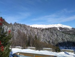 Pets-friendly hotels in Boscolungo