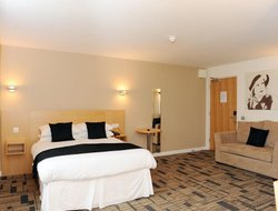Pets-friendly hotels in Stonehaven