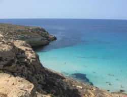 Pets-friendly hotels in Lampedusa Village