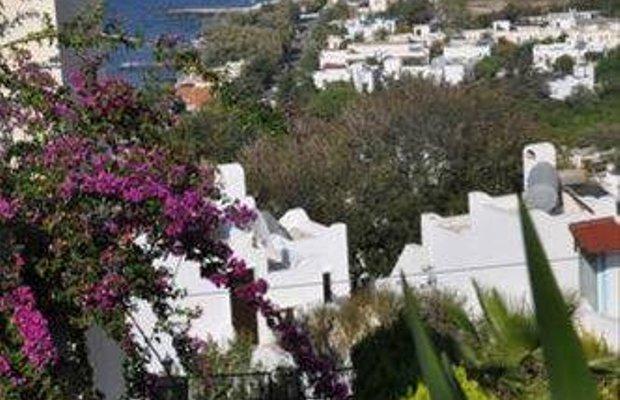 фото Villa Elegant 667907512