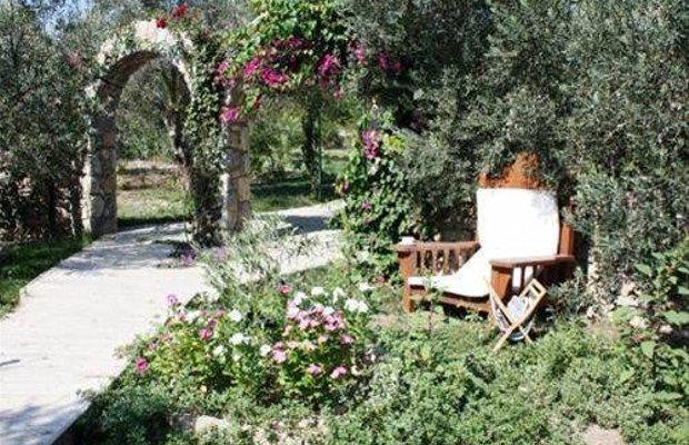 фото Olive Farm Of Datca Guesthouse 667949160