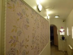 Pets-friendly hotels in Odintsovo