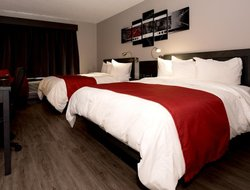 Pets-friendly hotels in Rimouski