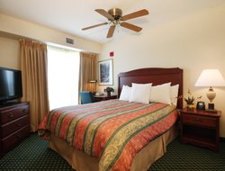 Pets-friendly hotels in Grapevine
