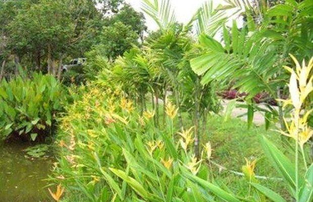 фото Pura Vida Pai Resort 668416697