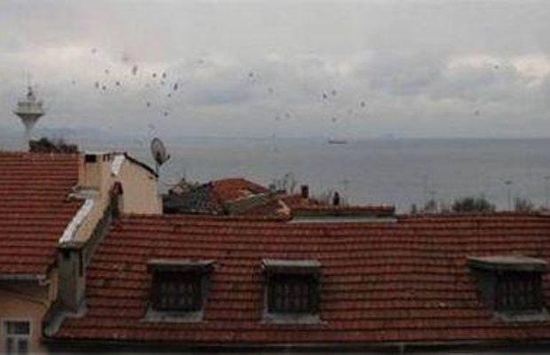 фото Olive Istanbul 668433316