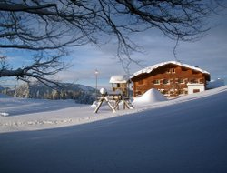 Pets-friendly hotels in Alberschwende