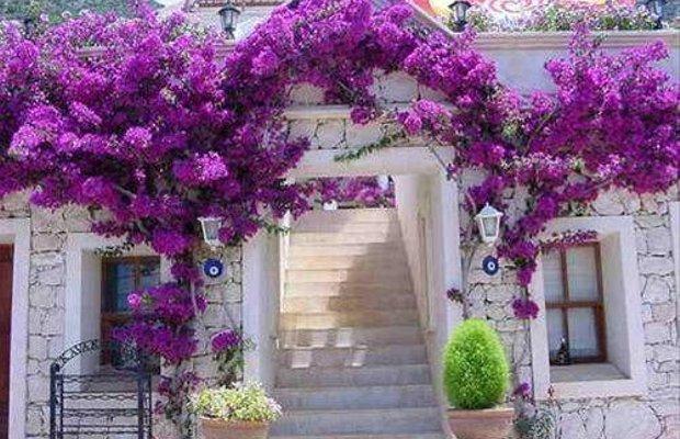 фото Villa Sultan Art Hotel 668474987