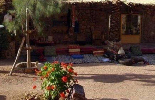 фото Desert Fox Camp 668743223