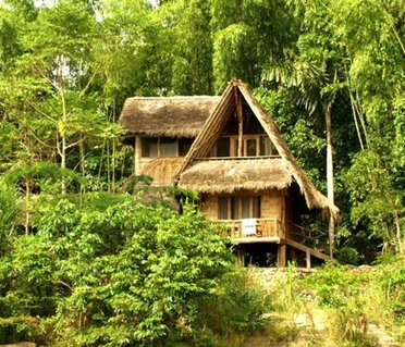 Cotococha Amazon Lodge - Napo River Lodge