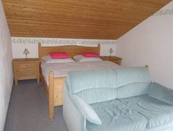 Pets-friendly hotels in St. Englmar