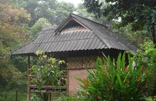 фото Baan Khao Sok Resort 677129045