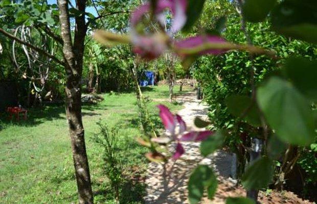 фото Khaolak C-Nior Bungalow 677184677