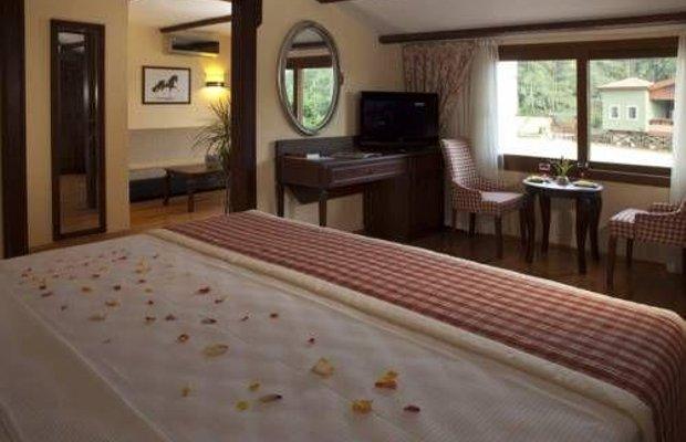 фото Padok Premium Hotel & Stables 677325053