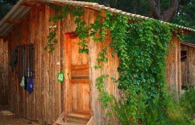 фото Saban Treehouses 677335019