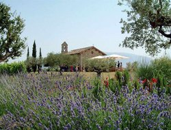 Santa Maria degli Angeli hotels with restaurants