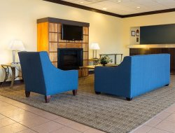 Pets-friendly hotels in Syracuse