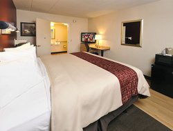 Pets-friendly hotels in Chesapeake