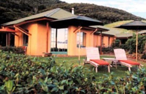фото Earthsong Lodge 687070034