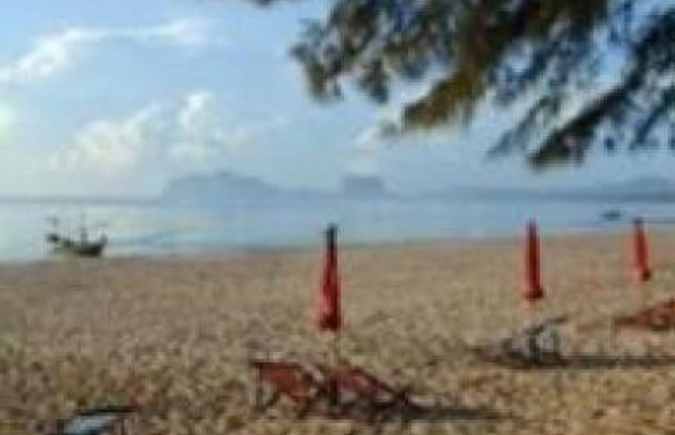 фото Bangburd Resort 687307165