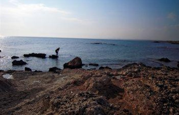 фото Pyla View Villas, Larnaca 693263748