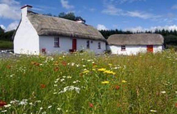 фото Honey Cottage 693422778