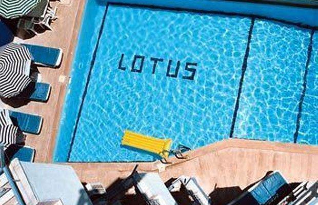 фото Lotus Hotel 698433264