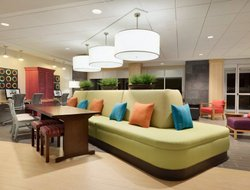 Pets-friendly hotels in Roseville