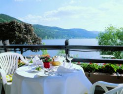 Pets-friendly hotels in Titisee-Neustadt