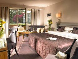 Pets-friendly hotels in Cork