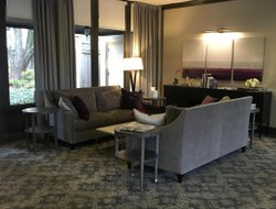 Business hotels in Bethesda