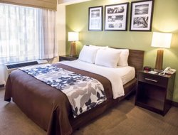 Pets-friendly hotels in Madison
