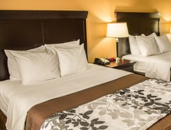 Pets-friendly hotels in Abilene