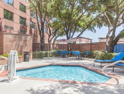 Pets-friendly hotels in Addison