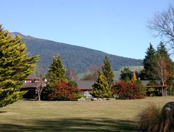 Turangi hotels with restaurants