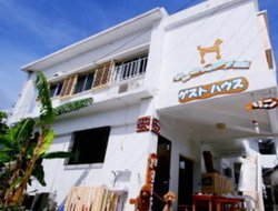Pets-friendly hotels in Ishigaki Island