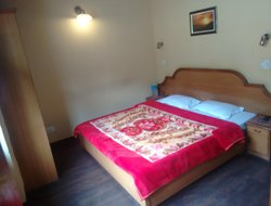 Pets-friendly hotels in Shimla