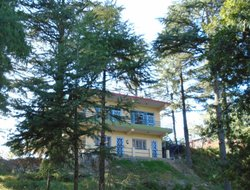 Almora hotels with restaurants
