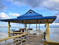 Pets-friendly hotels in Cebu Island