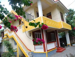 Pets-friendly hotels in Kumily
