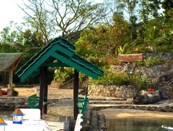 Pets-friendly hotels in Busuanga