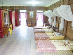 Pets-friendly hotels in Kampung Padang Masirat